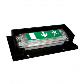 Emergency Exit (Maintained/Non-Maintained Switchable LED Version) EES